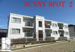 SUNNY SPOT2